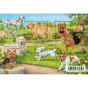 F4545 - SERIE NATURE - LES CHIENS.